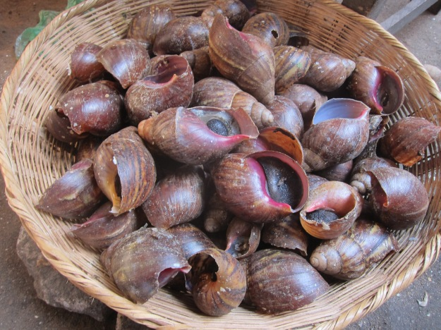 Dantokpa Market – Escargot