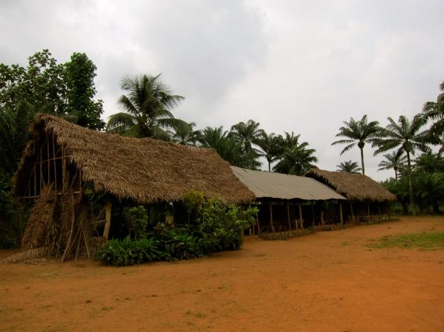 Local Elementary School