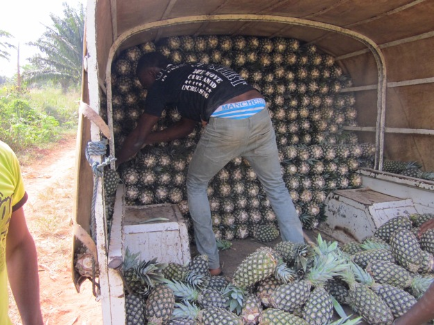 Truck o Pineapples